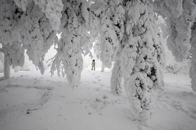 برف سنگین و دمای 15- در کرسنویارسک روسیه